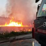 Catanzaro: in fumo arbusti e macchia mediterranea in viale Emilia