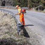 Anas: in corso manutenzione aree verdi sp 93 nel Vibonese