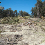 Tentato furto di legname, una denuncia nel Crotonese