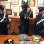Droga: nascondiglio marijuana scoperto dai carabinieri a Rosarno