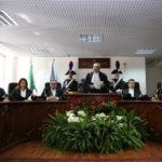 """Tar: Calabria; Salamone, """"Forte litigiosita' tra amministrazioni"""""""