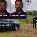 Furto legname: due persone arrestate nel Reggino dai Carabinieri