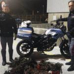 Sorpresi ad incendiare cavi rame 2 fratelli arrestati Reggio dalla Polizia