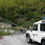 Coflenti: Pasqua di lavoro per i volontari del Gruppo Protezione Civile