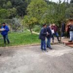 Corso potatura olivo consegnati 20 attestati di partecipazione