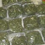 Droga: Polizia sequestra 1,6 kg marijuana nel Crotonese