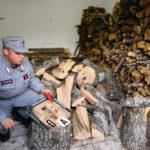 Furto legname: due fratelli denunciati nel Cosentino