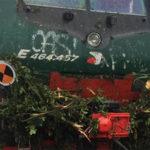 Maltempo: treno contro un albero finito sul binario, paura a Mantova