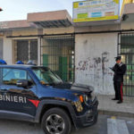 Gatto ucciso davanti a scolari: bidello denunciato dai Carabinieri