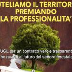 """Ambiente: Cuzzupi(Ugl), """"forestali diventino una risorsa per Calabria"""""""