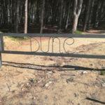 Catanzaro: Lobello,  ancora atti vandalici alle dune di Giovino