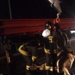 Incidenti stradali: cavallo investito su statale 280, un ferito