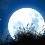 Castrovillari: il maggio dei libri si congeda con #la luna e' nostra#