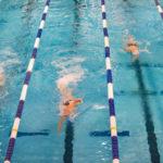 Nuoto, al via il II° Meeting Master Città di Cosenza 2019