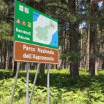 Parco Aspromonte: nuovo progetto di educazione ambientale