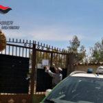 Animali: canile abusivo sequestrato nel Cosentino