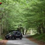 Pascolo abusivo: tre allevatori denunciati dai carabinieri