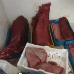 Sicurezza alimentare: controlli Guardia costiera a Vibo Valentia