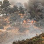 Incendi boschivi: a Saracena parte la campagna di prevenzione