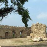 Lamezia: Ammendola(GC) area archeologica di Terina nel degrado