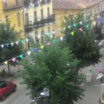 Lamezia: Nero(Mtl) chiede manutenzione alberi di via Garibaldi