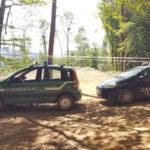 Lamezia: taglio abusivo in un bosco di faggio di proprieta' privata