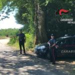 Sicurezza: controlli carabinieri Serra San Bruno, denunce