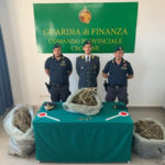 Droga: confezionavano 13 kg di marijuana, arrestati nel Crotonese