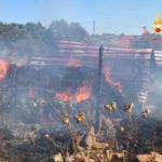 Incendio distrugge stalla nel Catanzarese, salvi animali