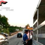 Incidenti stradali: furgone contro ciclista, un morto nel Vibonese