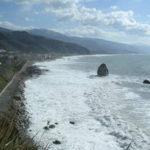 Ambiente: Arpacal, microalghe potenzialmente tossiche in mare