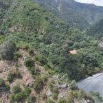 Droga: Gdf sequestra 932 piante di marijuana a San Luca (Rc)