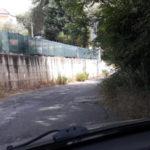 """Lamezia: Gianturco, """"Zone collinari in abbandono. Urgono interventi"""""""
