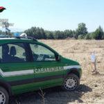 Abusivismo: 2 ettari terreno sequestrati nel Cosentino