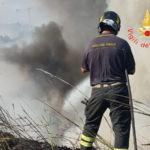Incendi: in fiamme macchia mediterranea a Catanzaro vicino statale 280