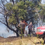 Diversi ettari macchia mediterranea a fuoco a Tiriolo