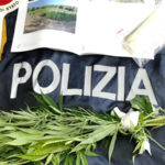 Droga: marijuana fra pomodori, ristoratore denunciato nel Vibonese