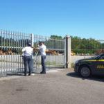 Strade: Gdf, danno erariale 56 mln per statale nel Vibonese