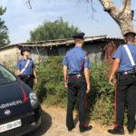 Intimidazioni: testa pecora in azienda agricola nel Vibonese