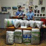 Droga: 55 kg di marijuana in auto, catanese arrestato in Calabria