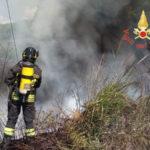 Castrovillari: ancora incendi nel territorio  del Pollino