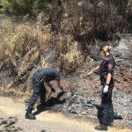 Incendi: due giovani sorpresi dalle telecamere a Lattarico, denunciati