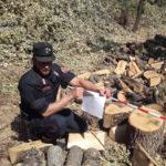 Tagliavano legna senza autorizzazione, due denunce a San Sosti
