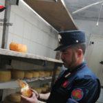 Caseificio abusivo scoperto nel Cosentino, sanzioni e sequestri