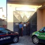 Sicurezza: Controlli dei Carabinieri a Lamezia Terme e Pianopoli