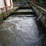 Serrastretta: depurazione comunale al via la progettazione