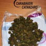 Contrasto allo spaccio di stupefacenti: 1 arresto a Catanzaro