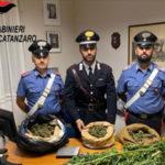 Droga: padre e figlio arrestati nel Catanzarese