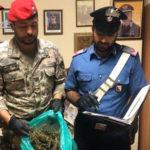 Sicurezza: controlli Carabinieri Gioia Tauro due arresti
