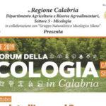 Al via a Camigliatello Silano il primo forum della micologia